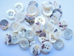 13 x Real Shell Coconut Shell Buttons 25mm